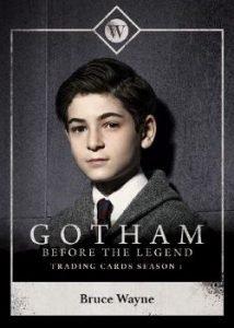 2016 Cryptozoic Gotham Season 1 Before the Legend TV Mini Master 100 Card Set at Gotham City Store