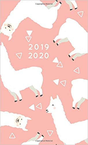 2019-2020: Monthly Pocket Planner | Mini 4 x 6.5