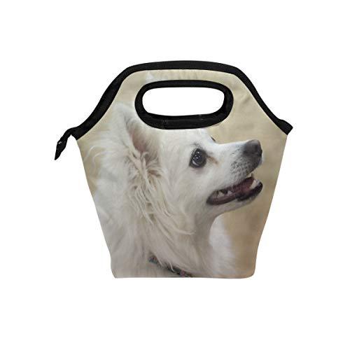 Lunch Box American Eskimo Dog Custom Womens Insulated Lunch Bag Kids Zipper Lunch Tote]()
