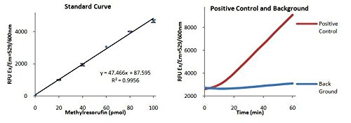 BioVision Lipase Activity Fluorometric Assay Kit III, K724-100