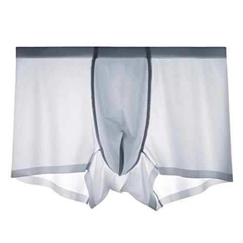 TIFENNY Breathable Ice Silk Underpants for Men Fashion Low Waist Underwear Silk Non-Slip Thin Pouch Underwear Panty Gray