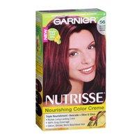 Nutrisse Garnier Medium Natural Treatment product image
