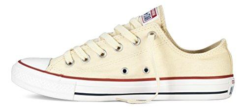 Converse Chucks All Star OX Chucks BEIGE M9165 37.5
