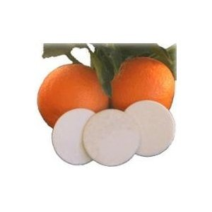 Citrus Circles Diaper Pail Deodorizing Disks