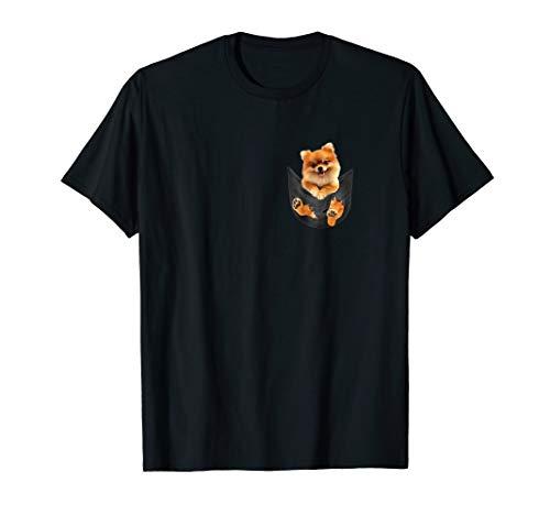 Pomeranians in pocket tee shirts