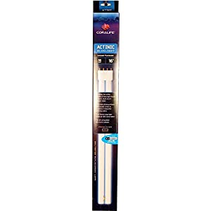 Coralife 05492 Actinic Straight Pin Compact Fluorescent Lamp, 36-Watt