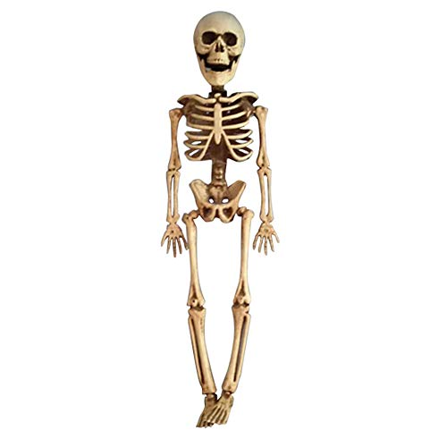 Pausseo 2-Pack Halloween Skeleton Toy Poseable Full Size Scary Human Skull Anatomical Body House Tricky Prop Doll Home Decoration by Pausseo - 40 X 10 X 6cm