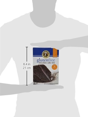 King Arthur Flour Chocolate Cake Mix, Gluten Free, 22-Ounce (Pack of 3) by King Arthur