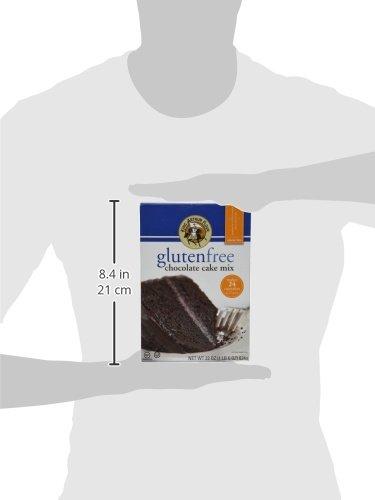 King Arthur Flour Chocolate Cake Mix, Gluten Free, 22-Ounce (Pack of 3)