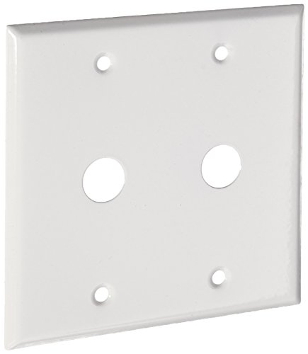 Wall Plate Plates 2 Hole - Morris 83472 Painted Steel Wall Plate for Cable, 2 Gang, .625