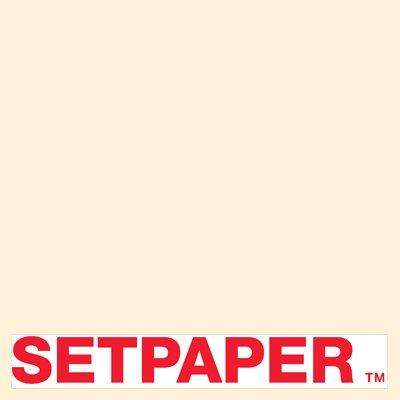 セットShop setpaperシームレスなペーパー# 50 Eggshell 26