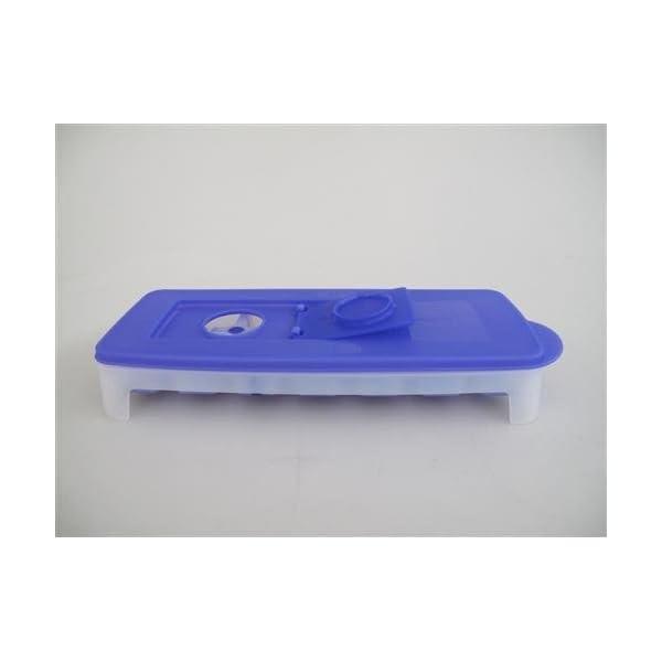 Tupperware, contenitore da congelatore per creare cubetti di ghiaccio, viola e bianco, G29 31087 2 spesavip