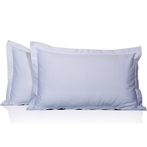 Luxury King Pillow Sham - 100% Egyptian Cotton Hotel Quality 2 Piece Pillow Shams 600 Thread Count Dust Mite Resistant Solid Pattern ( King ,20