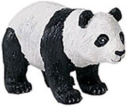 Wild Safari Wildlife Panda