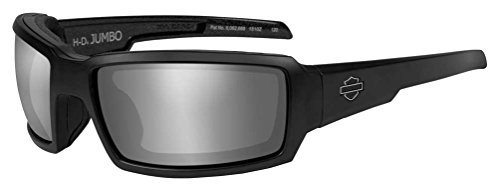 Harley-Davidson Men's Jumbo Sunglasses, Silver Flash Lens / Black Frame HDJUM04