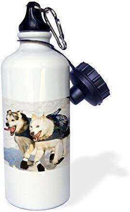 GFGKKGJFD612 Dogs Iditarod Start Alaska David Northcott White Aluminum Sports Water Bottle Novelty Gifts