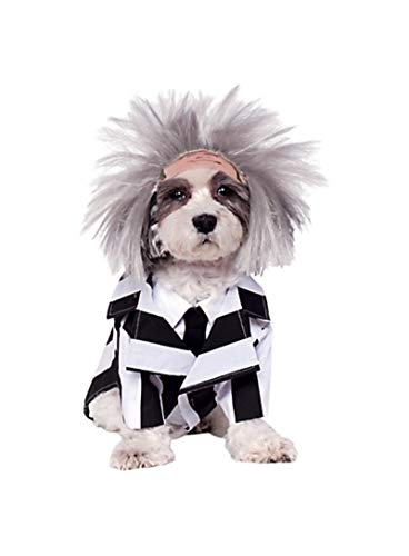 Beetlejuice Halloween Costumes For Dogs - HalloCostume Beetlejuice Dog Costume, Dog Costumes