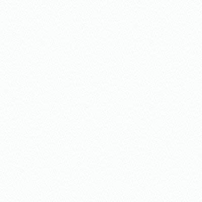 H7174 5200 Acrylic Enamel Gloss White 1 gal.