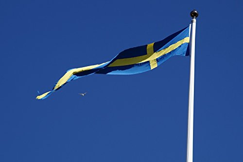 Home Comforts Framed Art for Your Wall Flag Swedish Flag Sweden Flutter Banner Blow 10x13 -