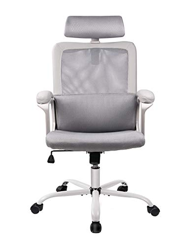 Office Chair High Back Ergonomic Chair Mesh Task Chair Adjustable Headrest Computer Desk Chair for Lumbar Support with Cloth Hanger, Gray