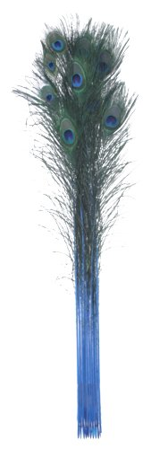 Zucker Feather (TM) - Peacock Feather Eyes Stem Dyed - Dark Turquoise