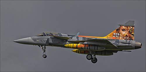 Innerwallz Fighter Airplane Czech Air Force SAAb JAS39C Gripen 9241 Aviation Wall Art, Pop Art, Poster, Art Prints | Rare Posters