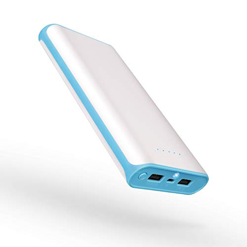 20000mAh Portable Power Bank 2 USB Ports Mobile Charger External Battery with Flashlight for iPhone 8X 8s 7 Plus 6s 6 Plus iPad Samsung Galaxy Smartphones Tablet and More (Blue Frame)