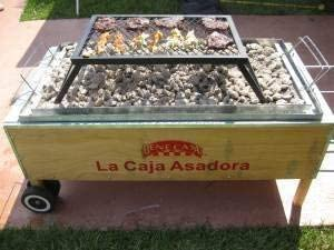 Bene Casa La Caja Asadora - Caja para Asar (Porcelana), diseño de jeringa marinadora: Amazon.es: Jardín