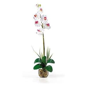Single Phalaenopsis Liquid Illusion Silk Flower Arrangement 9