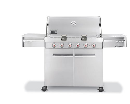 Weber 1750001 Summit Propane Stainless