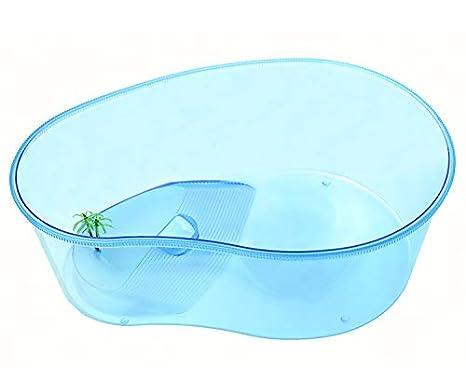 MEILI Gran Acuario De Plástico con Tanque De Tortuga Solarium Tanque Especial para La Cría De Tortuga,L: Amazon.es: Hogar