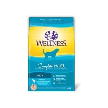 Amazon Com Wellness Complete Health Whitefish Amp Sweet