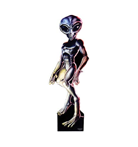 Advanced Graphics Roswell Alien Male Life Size Cardboard Cutout -