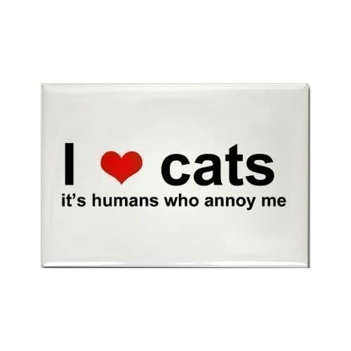 a funny fridge magnet with a picture of a cat with the wording i love cats