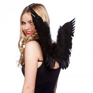 Feather wings Black Fancy Dress Adult one size