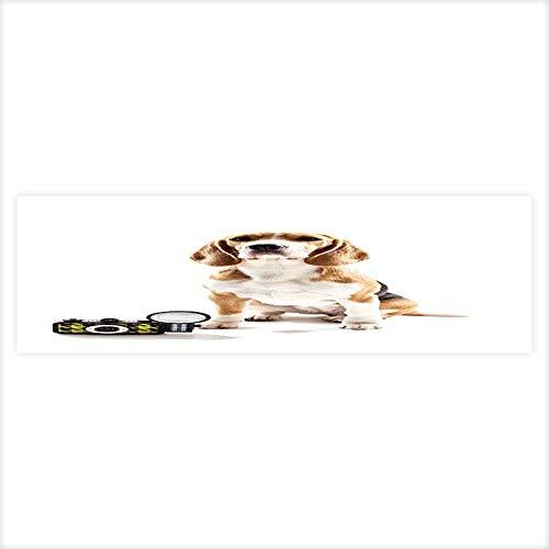 Auraisehome Aquarium Decorative Cheerful Beagle Puppy as a Professional Photographer Aquarium Background Sticker Wallpaper 23.6