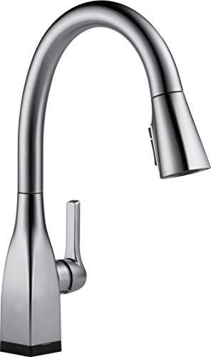 DELTA FAUCET Hubs Speakers on DailyMail