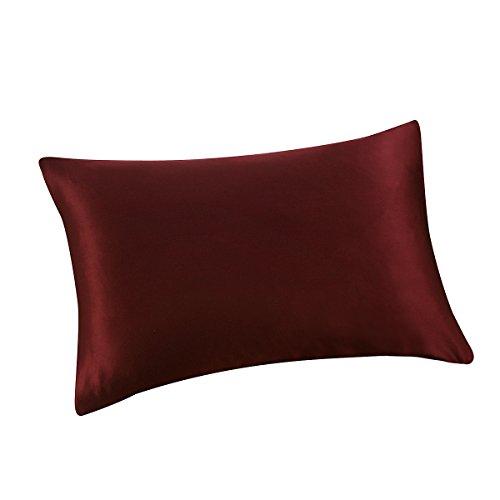 ALASKA BEAR - Natural Silk Pillowcase, Hypoallergenic, 19 Momme, 600 Thread Count 100 Percent Mulberry Silk, Standard Size with Hidden Zipper(1, Burgundy ()