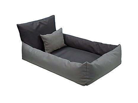 Almohada ortopédica Bella Ortho Perros sofá cama para perros Dormir Espacio tamaño: M de XL: Amazon.es: Productos para mascotas