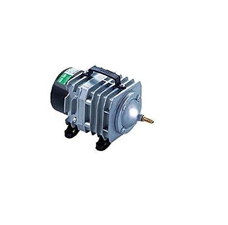 aquaforte Bomba de aire/pistón compresor Hailea ACO 318, 60L/min: Amazon.es: Productos para mascotas