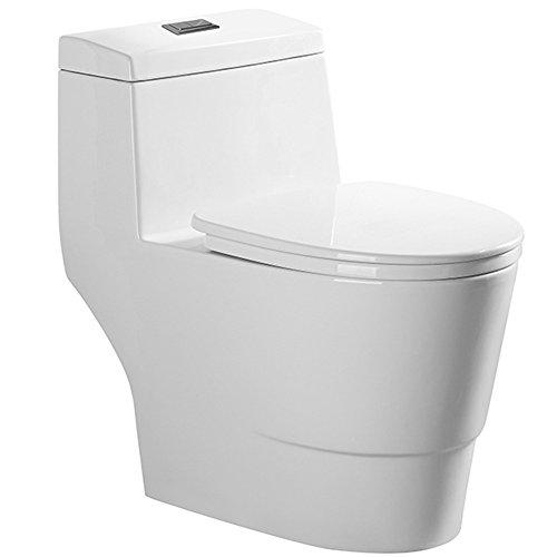 Woodbridge Dual Flush Elongated One Piece Toilet