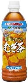 伊藤園 健康ミネラルむぎ茶 600mlPET(24本入×2ケース)