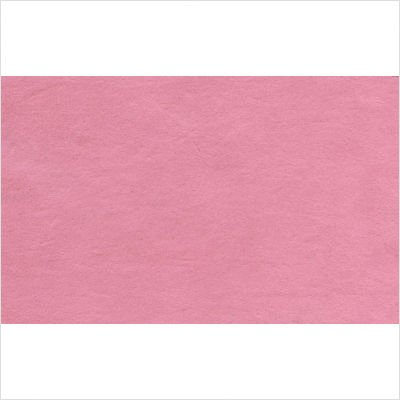 Snoozer Overstuffed Luxury Pet Sofa, X-Large, Pink