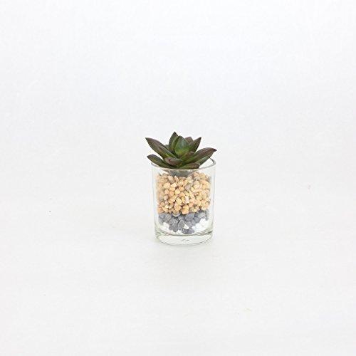 (Time Concept Decor Imitation Plant Mini Clear Glass Pot C - 2