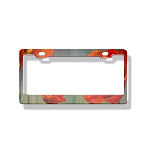 (luckmx Metal License Plate Frame Car Crafted from Durable Long Lasting Chrome Metal to Resist The Elements Oil Painted Poppies)