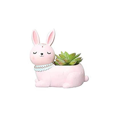 Clound city Cute Pink Rabbit Succulent Planter Pots for Office, Window, Kitchen and Balcony : Garden & Outdoor