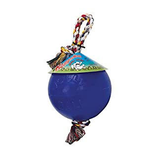"Romp-N-Roll Ball Color: Blue, Size: 14"" H x 6"" W x 6"" D"