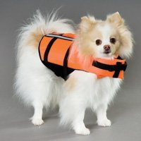 『4年保証』 ペットセーバーデラックス犬ライフベスト XL B001E8WE9M XL B001E8WE9M, 青ヶ島村:789d6262 --- a0267596.xsph.ru