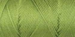 Bulk Buy: Caron Simply Soft Collection Yarn (3-Pack) Pistachio H97COL-3 by Caron Bulk Buy