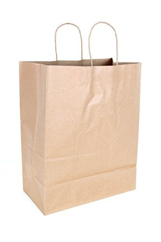 2dayShip Paper Retail Shopping Bags with Rope Handles 13 x 7 x 17 inches, 25 Count